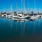 The marina at Wynnum, Queensland by hanspeder