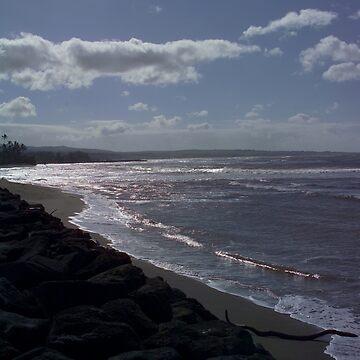 Kauai Beach West Side by psart