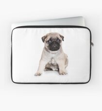 Charming pug puppy Laptop Sleeve