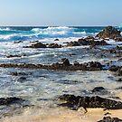 Quintessential Hawaii - Rough Lava Rocks and Surf by Georgia Mizuleva