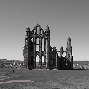 Old building ruins in black and white by franceslewis