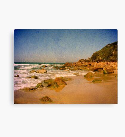 Sharkies Beach Canvas Print