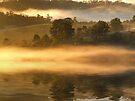 """""""Morning Mist Reflected"""" by debsphotos"""