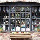 shop window by linsads