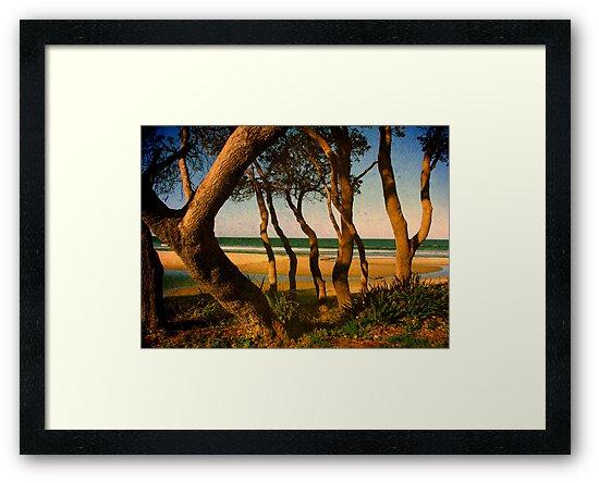 Tropicale by Kitsmumma