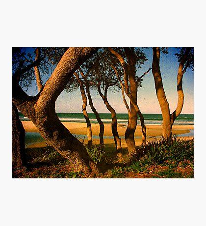 Tropicale Photographic Print