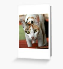 Hey You ! Greeting Card