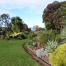 A True Friends lovely coastal Garden, Port Lincoln, South Australia. by Rita Blom