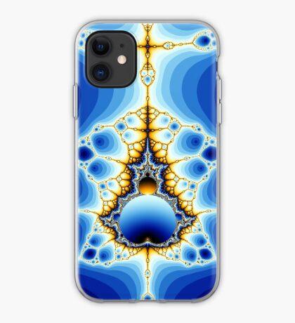 20150129-001 iPhone Case