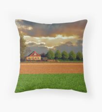 Polder House Throw Pillow