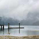 West coast at Zeballos on Vancouver Island by Istvan Hernadi