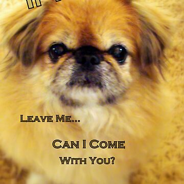 If You Leave Me.... by susanbergstrom