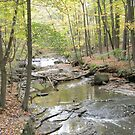 Bedford Reservation 10-05-14 by BarbBarcikKeith