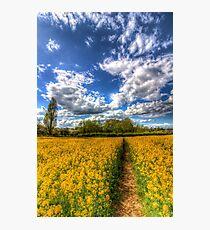 The Farm Footpath Photographic Print