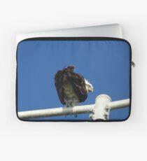Osprey - Cottesloe - predator with attitude Laptop Sleeve