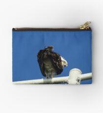 Osprey - Cottesloe - predator with attitude Studio Pouch