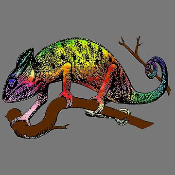 chameleon lizard reptile exotic animal by untagged-shop