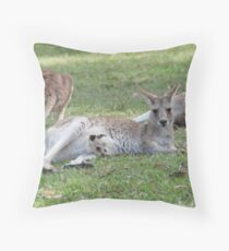 Eastern Grey Kangaroos, NSW, Australia Throw Pillow