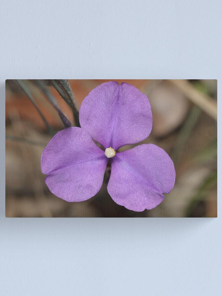 Alternate view of Silky Purple Flag (Iris) Canvas Print