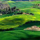 The green Tuscany by annalisa bianchetti