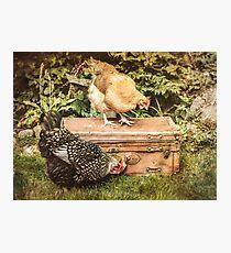 Suitcase Photographic Print