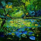 pond and waterlilies by calimero