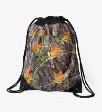 Paintbrushes on the Flume Trail Drawstring Bag