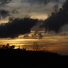 Everglades Sunset by PicNick