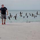 """""""Bird Man of Blind Pass Beach"""" by John  Kapusta"""