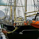 STS Leeuwin II by V1mage