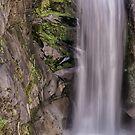 Christine Falls  by John  Kapusta