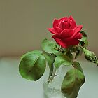 Ruby Rose by niki2028