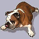 Bulldog 2017 by jamestomgray