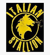 Italian Stallion Photographic Print