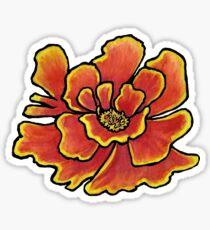 Marigold with white background Sticker