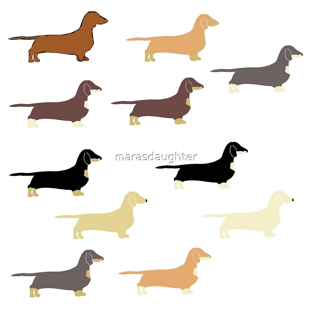 Dachshund All Colors Silhouettes By Marasdaughter Redbubble