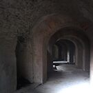 arches through time by mklau