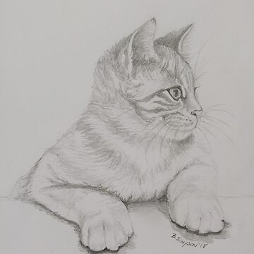"Drawing of Kitten ""Axle"" 1 by RiseAndConquer"