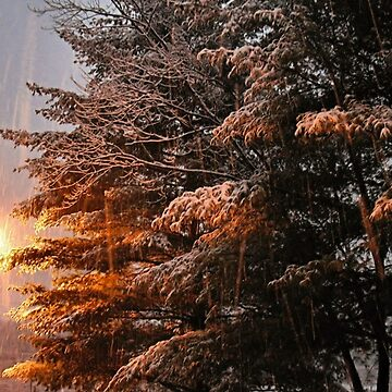"""""""A Snowy Evening in Knoxville"""" (no. 7, from this series)... products by ArtbyBob"""