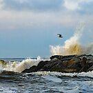 Sea Splash by AnneDB