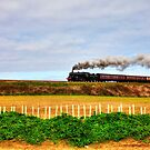 Black Price Steam Train Norfolk Railway by Paul Thompson Photography