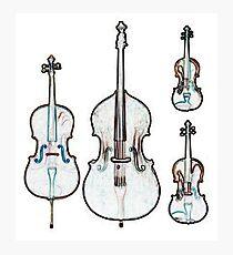 The Four Strings - Violin, Viola, Cello, Bass Photographic Print