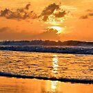 Watching The Tide by ©Dawne M. Dunton