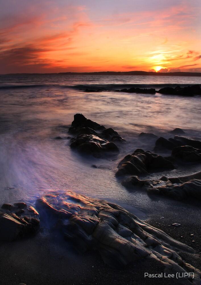 Longstrand Beach by Pascal Lee (LIPF)