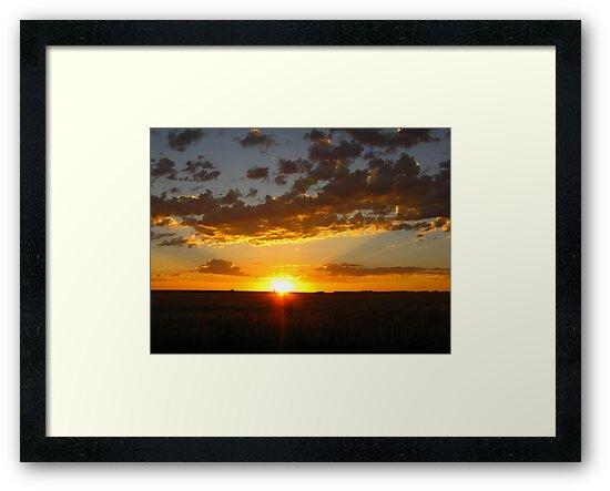 One Glorious Sunrise by Brenda Dahl