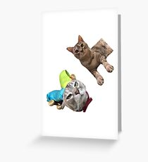 Kuschelt die Katze 2 Grußkarte