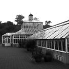 Conservatory, Dunedin Botanic Garden, New Zealand by Douglas E.  Welch