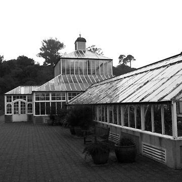 Conservatory, Dunedin Botanic Garden, New Zealand by douglasewelch