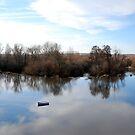 Rio Tormes Salamanca by inglesina