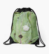 Common Green Shield Bugs Day 4 Drawstring Bag